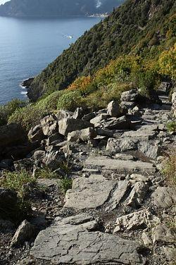 cinque terre hiking trail near corniglia